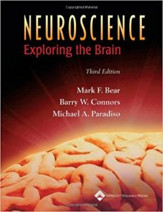 Top 5 Best Selling Chiropractic Books - exploring the brain