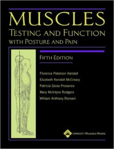 Top 5 Best Selling Chiropractic Books - muscle pain relief